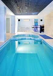 schwimmbad pool reinigungsroboter von t scharner gmbh aus d 38165 lehre wendhausen. Black Bedroom Furniture Sets. Home Design Ideas